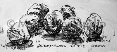 Watermelons in the Grass by M-J Kelley (pen and ink)