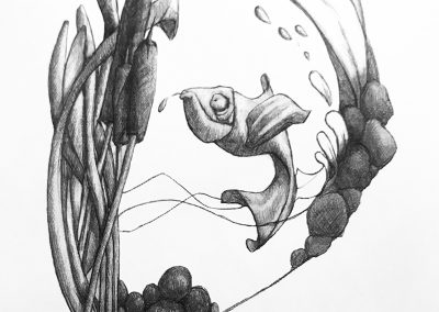 M-J Kelley's drawing of a fish in a pseudo looking fishbowl. Graphite.