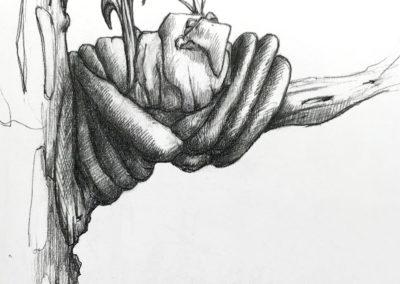 M-J Kelley's drawing of a bird in a nest in a tree. Graphite.