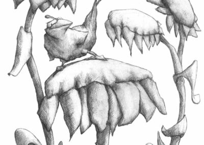 M-J Kelley's drawing of a flashy bird on top of a sunflower. Graphite.