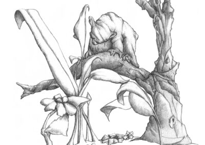 M-J Kelley's drawing of Wonder the bear looking at flowers. Graphite.